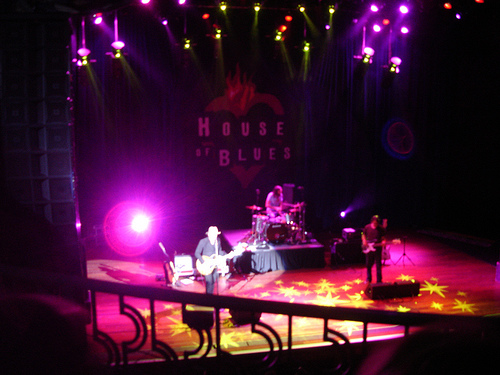 wallflowers-hob