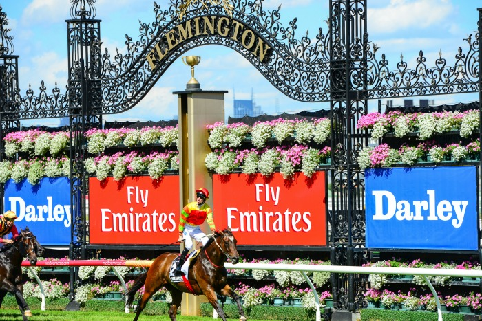 flemington race track