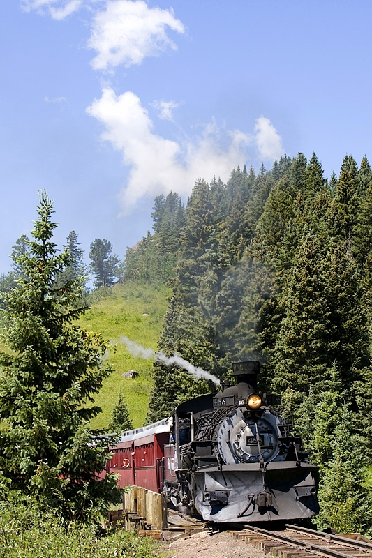 cumbres toltec steam locomotive in trees